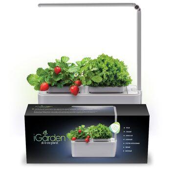 Компактный смарт-сад iGarden LED с подсветкой